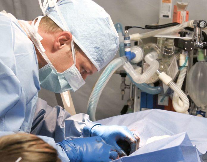 plazas FEA anestesia cardiologia Simebal